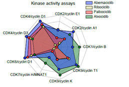 Multi-omics profiling establishes the polypharmacology of FDA Approved CDK4/6 inhibitors and its impact on drug response.